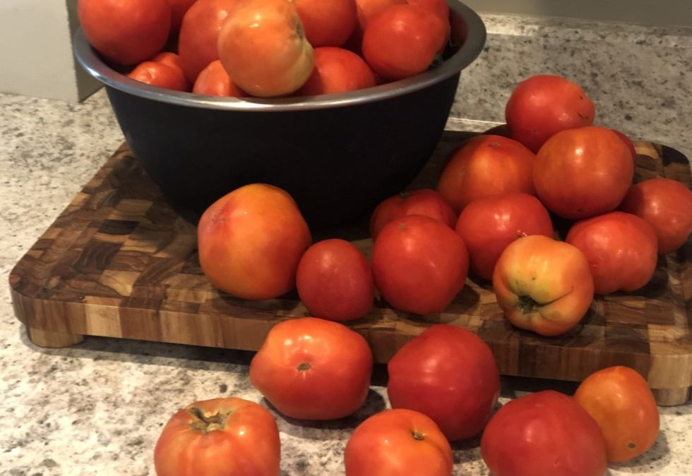 Too many tomatoes and not enough time to can them? Life hack – puree and freeze them!